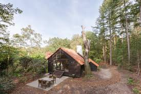 100 Tree House Studio Wood Landgoed Dennenholt Huizen De Nink The Cottage En House