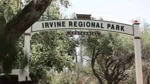 Irvine Regional Park Pumpkin Patch by Irvine Park Railroad Youtube