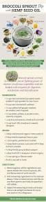 Curious Traveler Pumpkin Shandy Calories by Best 10 Being Boring Ideas On Pinterest Kinds Of Art Images Of