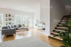 weiße wohnzimmer interieur mit grauen ecke sofa grüne frische pflanzen teppich auf dem boden und holztreppen stockfoto und mehr bilder boden