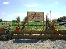 Pumpkin Patch Petting Zoo Illinois by 10 Great Pumpkin Patches In Colorado