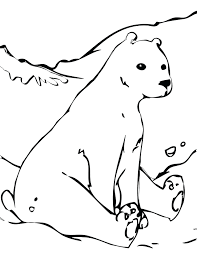 Antarctica Printable Coloring Pages Antarctic Animal Arctic Animals Within Free Full Size