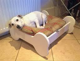 Coolaroo Dog Bed Large by Ballistic Dog Beds Luxury Stain Ballistics Original Tuff Bed