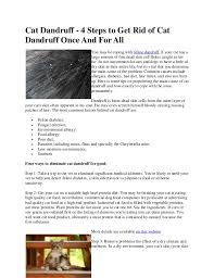 my cat has dandruff cat dandruff 4 steps to get rid of cat dandruff once and for all