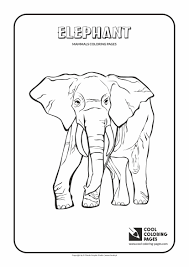 Mammals Coloring Pages