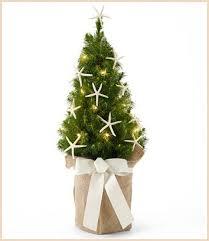 Kohls Artificial Christmas Trees by Beach Christmas Decorations U0026 Ideas Inspired By Sea Sand U0026 Shells