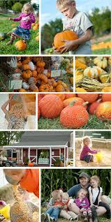 Papas Pumpkin Patch Hours by Diane U0027s Pumpkin Patch In Canon City Randy Ashley Studios