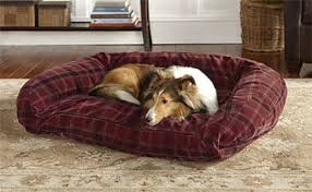 dog beds memory foam toughchew bolster beds orvis uk