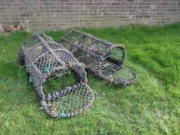 Decorative Lobster Traps Large by Fantastic Lobster Pots Standard U0026 Large For The Garden Lots