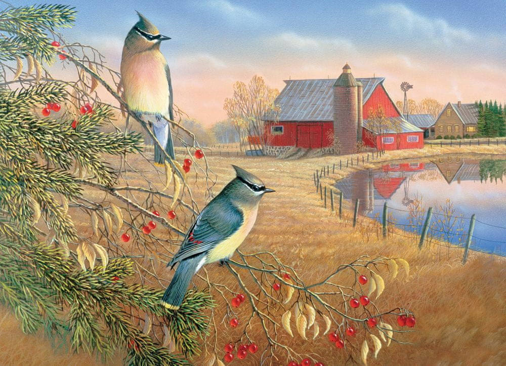 Outset Media OM80189 Cedar Waxwings Puzzle, 1000 Piece