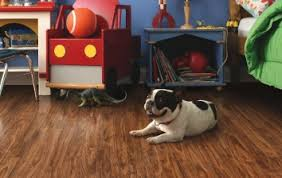 Best Type Of Flooring For Dogs by Carpet Richmond Va Flooring Rug And Carpeting Store