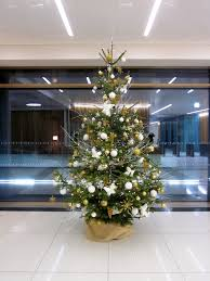 Christmas Tree 10ft by 10 Ft White Christmas Tree Christmas Lights Decoration