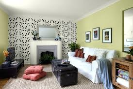 Best Colors For Living Room Accent Wall by Best Ideas About Accent Wall Colors Living Room Latest Salon Paint
