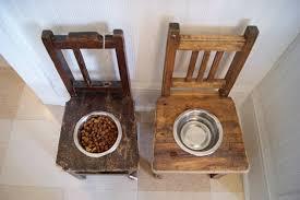 Dog Food On Chair