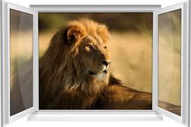 wandtattoo wandbild fenster löwe afrika savanne wohnzimmer deko