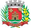 imagem de Ariranha São Paulo n-19