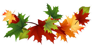 Pile of fall leaves clipart