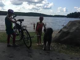 Tolland State Forest After Riding Bikes To The Beach Area Dogs Are Not Allowed