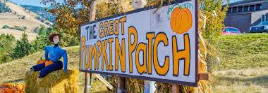 Swans Pumpkin Farm Hours by Corn Mazes Pumpkin Patches And Fall Fun Destination Missoula