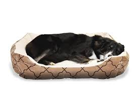 Petco Dog Beds by Donut Bed For Dog Cat Beds Heated Luxury Outdoor Petco At Walmart