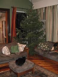 Jefferson County Co Christmas Tree Permits by Habitatdana Habitat Horticulture Pnw Page 2