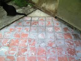 Tile Haze Remover Uk by Reclaimed Quarry Tiles Patio Restoration In New Cross Se London