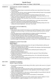 Download Marketing Account Manager Resume Sample As Image File