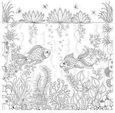 Johanna Basford Secret Garden An Inky Treasure Hunt And Coloring Book