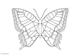 Butterflies Coloring Pages Black Swallowtail Butterfly Page Free Here Are Pictures Of Fr Spring