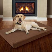 Extra Large Orthopedic Dog Bed by Large Memory Foam Dog Bed With Removable Cover 46