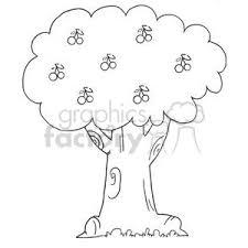 Black and White Cherry Tree