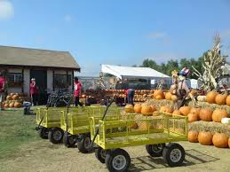 Pumpkin Patch Farm Temecula by Halloween 2014 13 Spooky Activities For The Holiday U2013 Press