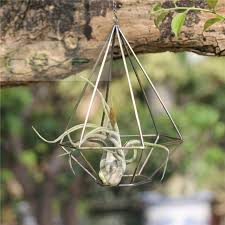 Air Plants Holder Pot Rustic Style Hollow Freestanding Hanging Metal Diamond Shaped Tillandsia Plant Rack