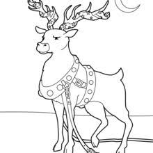 Reindeer Decorated For Christmas Adorned Coloring Page