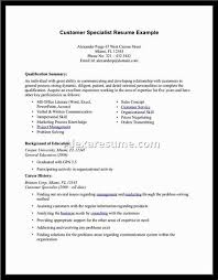 Sample Resume For Sales And Distribution 1