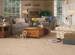 Brown Carpet Living Room Ideas by Carpet For Living Room Designs Home Design
