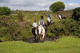 100 Farm House Tack House Horse Riding Holiday