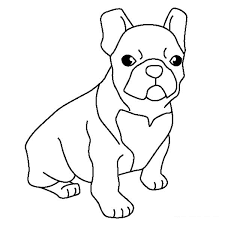 Happy Bulldog Coloring Pages Perfect Page Ideas