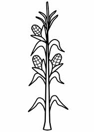 Click To See Printable Version Of Corn Stalk Coloring Page