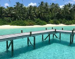 100 Conrad Maldive Reef Rejuvenation At S Rangali Island COOL