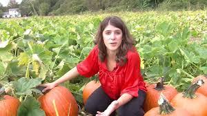 Pumpkin Picking Maine by Pumpkin Picking 101 Youtube