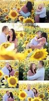 Pumpkin Patch Topeka Ks by Sunflower Field Engagement Session Engagement Pictures