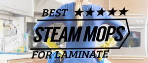 Best Steam Mop For Laminate Floors 2015 by Best Steam Mop For Laminate Floors The Steam Mop Club