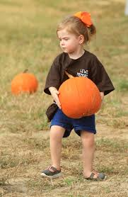 Kent City Pumpkin Patch by Fall Fun Area Children Visit Tupelo Buffalo Park And Zoo For