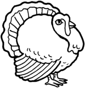 Turkey Coloring Pages