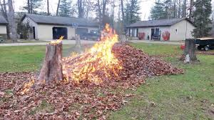 Exploding Leaf Pile - YouTube Evergreen Winter Damage Learn About Treating And Preventing Cheat With Low Tunnels Fall Leaf Burn Youtube Fire Pit Safety Maintenance Guide For Your Backyard Installit Outdoor Burning Nonagricultural Bay Leaves In The House And See What Happens After 10 Minutes Tips For Removing Poison Ivy Bush Insect Pests How To Identify Treat Bugs That Eat To Guidelines Infographic Dont Holly Hollies With Scorch Glorious Autumn My Minnesota Backyard Prairie Roots April Month Powell River Today