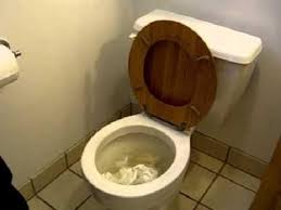 15 best fix a clogged toilet images on pinterest bathrooms décor