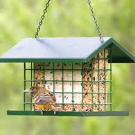 Suet Feeder & Seed Cake Feeders Suet Feeders Wild Bird Suet