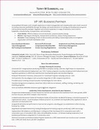 100 Agile Resume Sample For Business Analyst Position Valid Scrum Master