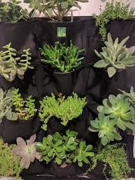 12 Pocket Outdoor Vertical Living Wall Planter –